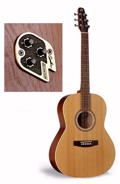 Seagull Coastline S6 Cedar Folk Q1 Size Acoustic Electric Guitar List 64900 32525 Series The Guitars That Make Up